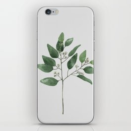 Branch 2 iPhone Skin