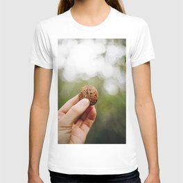 Photo of a walnut in autumn colors, Almere, Holland/The Netherlands | Fine Art Colorful Travel Photography | T-shirt