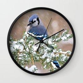 Winter Has Arrived (Blue Jay) Wall Clock