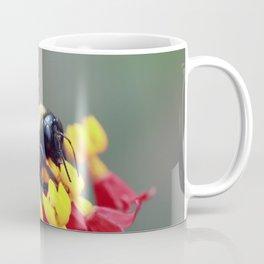 Bee on Milkweed Coffee Mug