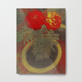 Potted Tagetes. (Canvas) Metal Print