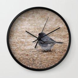 Tiny Junco in a Big World Wall Clock