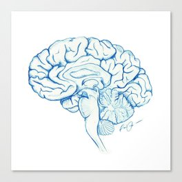 Brain in pencil Canvas Print