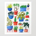 House Plants by sewzinski