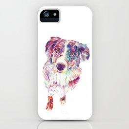 Multicolored Australian Shepherd red merle herding dog iPhone Case
