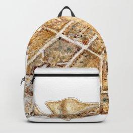 Angel shark Backpack