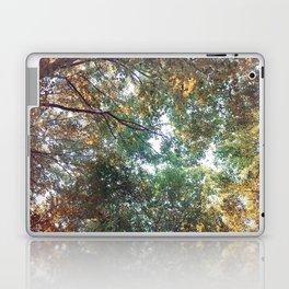Forest 011 Laptop & iPad Skin