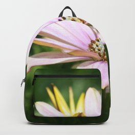 African Daisy Close Up Backpack