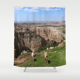 Bighorn Sheep At Sage Creek Shower Curtain