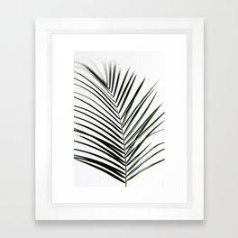 Palm Leaves 7 Framed Art Print