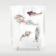 Koi Fish Watercolour Shower Curtain
