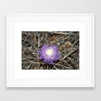 plant Framed Art Prints featuring plant by  Agostino Lo Coco
