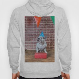 Portrait of French bulldog angry on his birthday Hoody