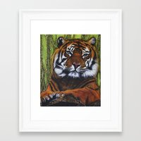 charmaine Framed Art Prints featuring Tiger print by Charmaine Diedericks