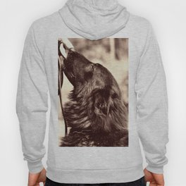 The love of a dog to man Hoody