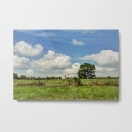Country Hill Metal Print