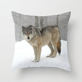 A lone wolf Throw Pillow