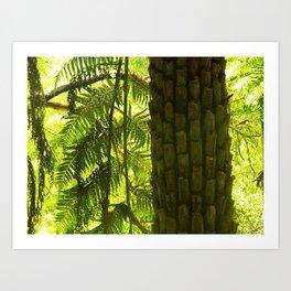 Fern Tree Art Print