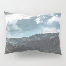 Zumbador Landscape Pillow Sham