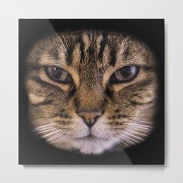 Enter the Catface Metal Print