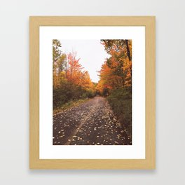 Autumn Carriage Roads in Acadia National Park Framed Art Print