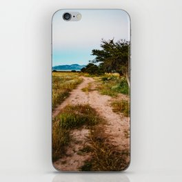 Blue collar country iPhone Skin