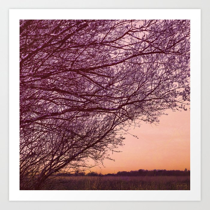 Purple Tree, Coral Orange Sky Art Print