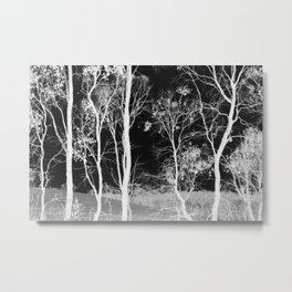 Bush Spirits Metal Print