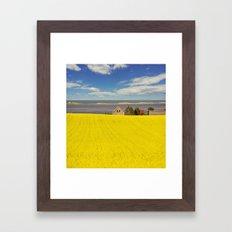 Bright Canola Framed Art Print