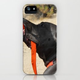 Dog in Joshua Tree National Park iPhone Case
