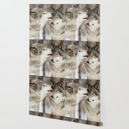 Wolf Kisses Wallpaper