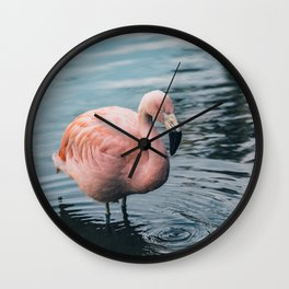 Save the Pink Flamigos Wall Clock