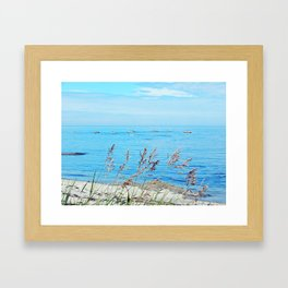 Circle of Rocks and the Tall Grass Framed Art Print