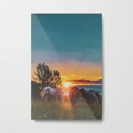 Horse Sunrise (Color) Metal Print