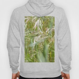 Green Barley, Textures44 Hoody