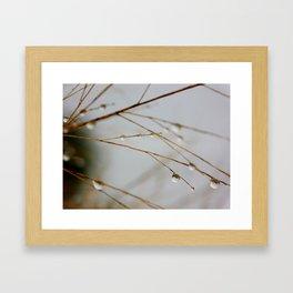 Nature cries Framed Art Print