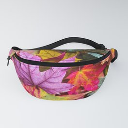 Indian Summer 4 Fanny Pack