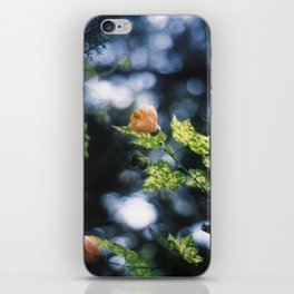Bells iPhone Skin