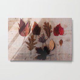 Autum Leaves Metal Print