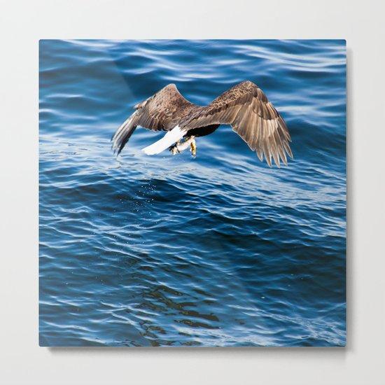 Eagle: Fast Food Metal Print
