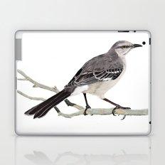 Northern mockingbird - Cenzontle - Mimus polyglottos Laptop & iPad Skin