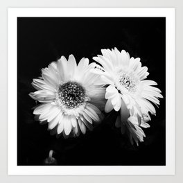 Flowers in Black and White - Nature Vintage Photography Art Print