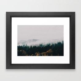 Forest Fog Framed Art Print