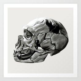 Neanderthal Skull Art Print