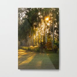 Sunburst at Litchfield National Park Metal Print