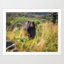 Running Bear Art Print