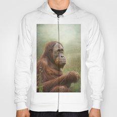 Orangutan Hoody