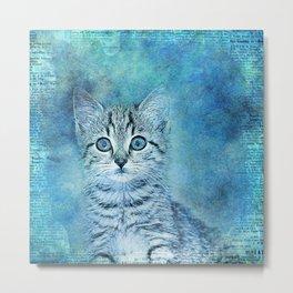 Blue Kitten Metal Print