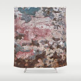 Cracking Paint and Rust Abstract Shower Curtain