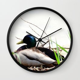 Chilling on the shore Wall Clock